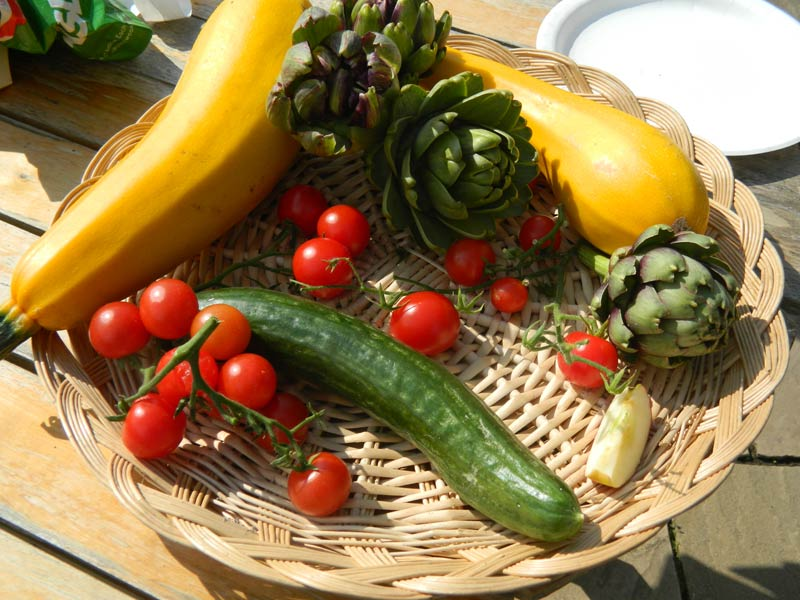 Manage an Allotment